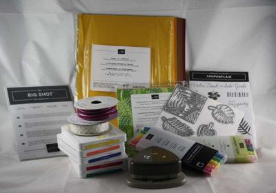 Stampin`Up!, Materialbestellung, Farbkarton, Geschenkband, Stempelfarbe, Stempelkissen, Motiv- und Spruchstempel, Stanzen und Thinlits